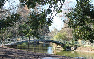 Jardin Public - photo de couverture - pont