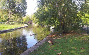 Parc Bordelais - rivière