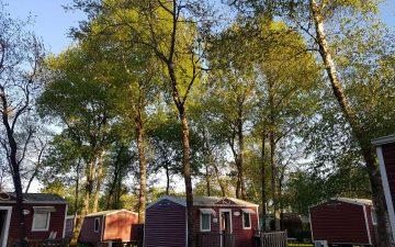 Photo de cottage du camping le Village du Lac